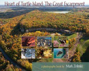 Turtle Island book cover